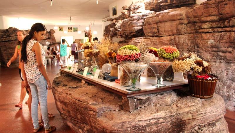 Projeto Sempre-Viva, Mucugê/BA. Foto: Thaís de Albuquerque | www.be.net/thalbuquerque