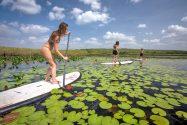Stand Up Paddle no Rio Marimbus (Bruno Graciano)