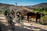 Carro de boi no caminho das bikes | Foto: Armin Kuestenbrueck / Brasil Ride