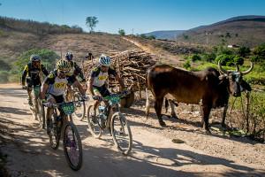 Carro de boi no caminho das bikes (Armin Kuestenbrueck / Brasil Ride)