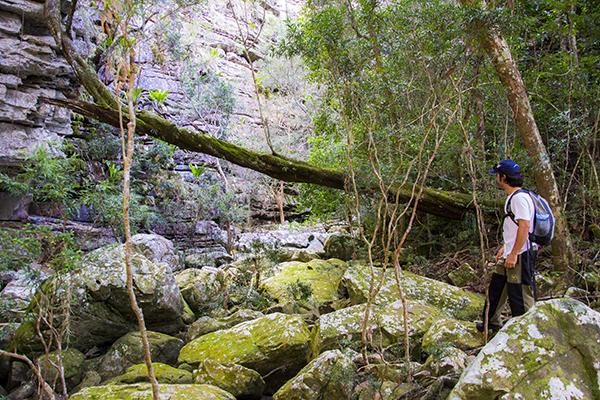Caminho para a Cachoeira do Bequinho. Foto: Caiã Pires