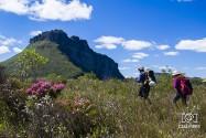 Morro do Manoel Vitor, no Vale do Pati | Foto: Caiã Pires