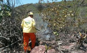 Brigadista do ICMBio no local do incêndio, em Ibicoara| Foto: Divulgação