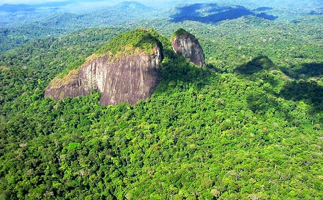 Parque Nacional Montanhas do Tumucumaque, na Amazônia. | Foto: www.portalamazonia.com.br