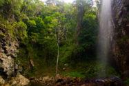Cachoeira do Patrício | Foto: Clara Pires