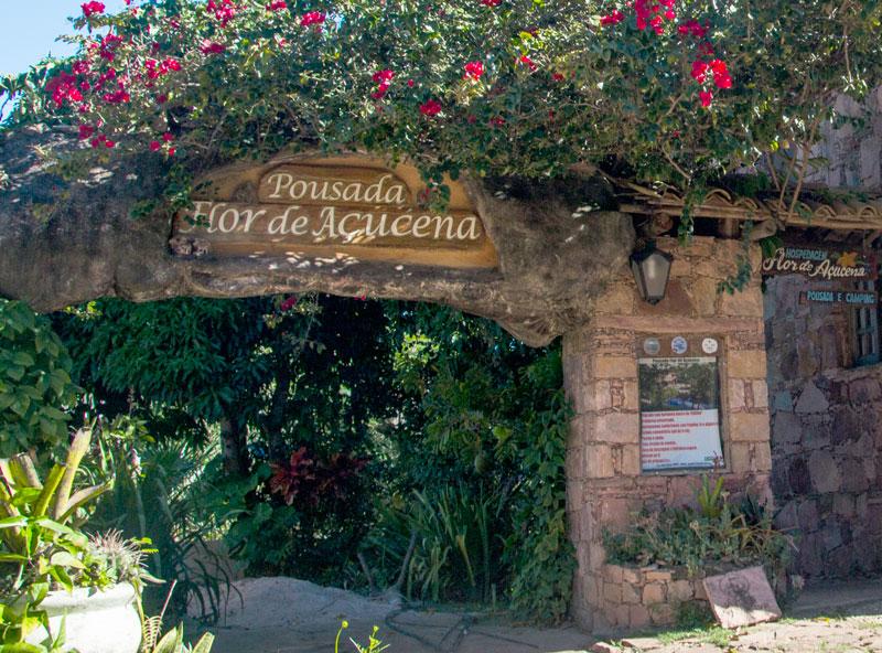 Guia-Chapada-Diamantina_Flor-de-Açucena-Destaque